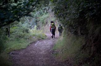 The Camino 9 (2)