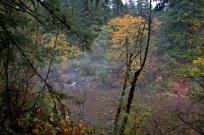 Fall 2012 5