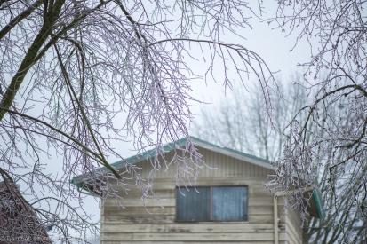 Ice Storm 2014-3