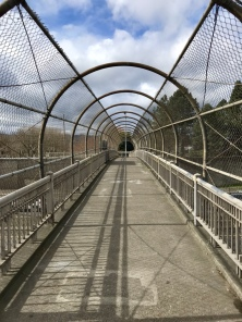 Failing St. Pedestrian Bridge
